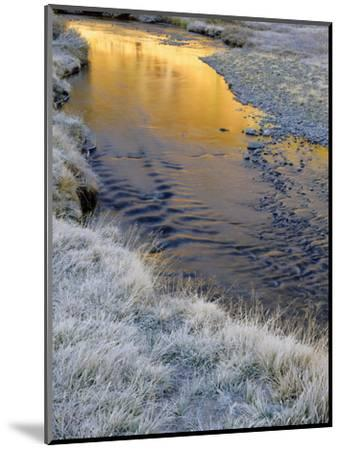 California, Inyo National Forest-John Barger-Mounted Photographic Print
