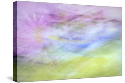 Washington State, Seabeck. Abstract of Flowers in Motion-Jaynes Gallery-Stretched Canvas Print