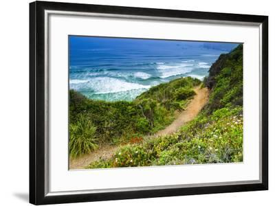 The Trail to Sand Dollar Beach, Los Padres National Forest, Big Sur, California, Usa-Russ Bishop-Framed Photographic Print