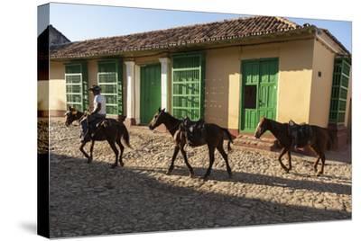 Cuba, Trinidad. Pulling Horses Along Cobblestone Street-Brenda Tharp-Stretched Canvas Print