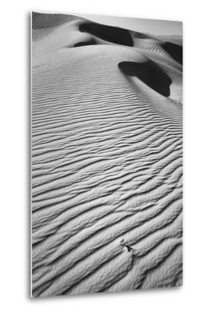California, Mojave Trails National Monument-Judith Zimmerman-Metal Print