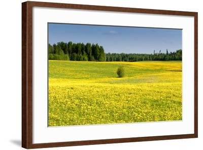 Fields at Varska, Estonia, Baltic States-Nico Tondini-Framed Photographic Print