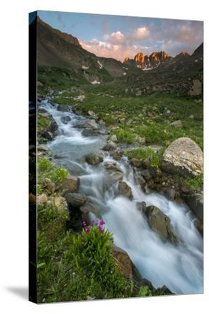Colorado, Rocky Mountain Sunset in American Basin with Stream and Alpine Wildflowers-Judith Zimmerman-Stretched Canvas Print