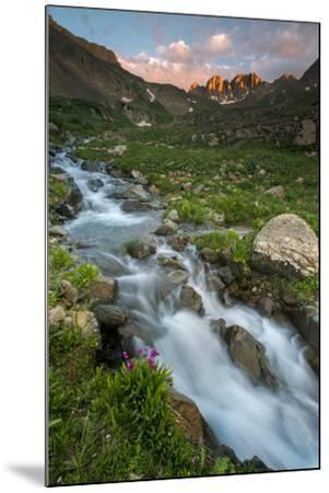 Colorado, Rocky Mountain Sunset in American Basin with Stream and Alpine Wildflowers-Judith Zimmerman-Mounted Photographic Print