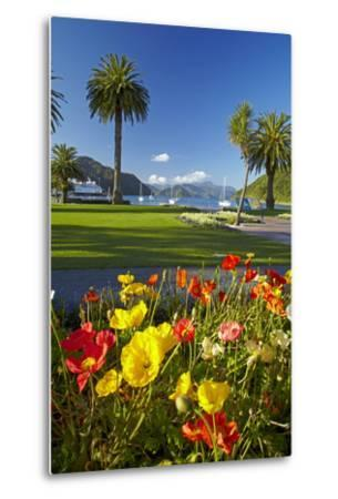 Flowers and Palm Trees, Foreshore Reserve, Picton, Marlborough Sounds, South Island, New Zealand-David Wall-Metal Print