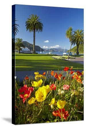 Flowers and Palm Trees, Foreshore Reserve, Picton, Marlborough Sounds, South Island, New Zealand-David Wall-Stretched Canvas Print