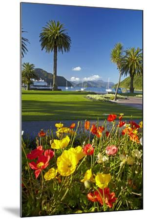 Flowers and Palm Trees, Foreshore Reserve, Picton, Marlborough Sounds, South Island, New Zealand-David Wall-Mounted Photographic Print