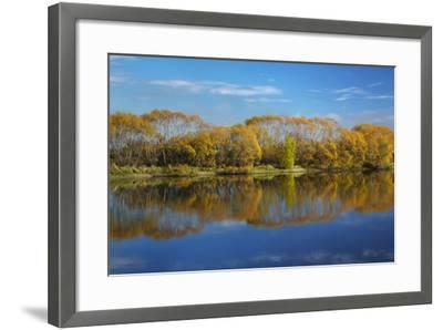 Autumn Colour and Clutha River at Kaitangata, Near Balclutha, New Zealand-David Wall-Framed Photographic Print