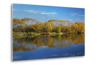 Autumn Colour and Clutha River at Kaitangata, Near Balclutha, New Zealand-David Wall-Metal Print