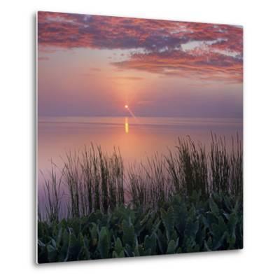 Sunrise over Indian River Marsh Near Titusville, Florida, Usa-Tim Fitzharris-Metal Print