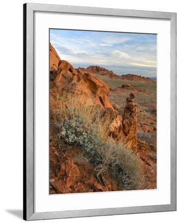 Landscape of Valley of Fire State Park, Nevada, Usa-Tim Fitzharris-Framed Photographic Print