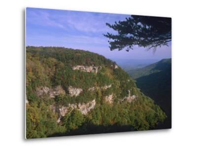 Cloudland Canyon State Park, Georgia, Usa-Tim Fitzharris-Metal Print
