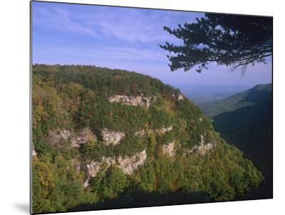 Cloudland Canyon State Park, Georgia, Usa-Tim Fitzharris-Mounted Photographic Print