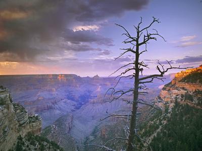 Overlook Near Grandview Point, Grand Canyon National Park, Arizona, Usa-Tim Fitzharris-Framed Photographic Print