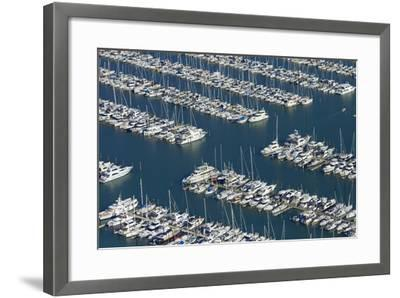 Westhaven Marina, Auckland, North Island, New Zealand-David Wall-Framed Photographic Print