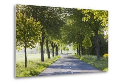 Denmark, Mon, Magleby, Country Road-Walter Bibikow-Metal Print