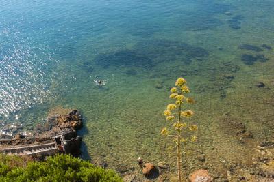 Cliffs of Talamone, Grosseto Province, Maremma, Tuscany, Italy-Nico Tondini-Framed Photographic Print