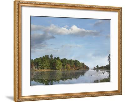 Millwood Lake, Millwood Lake State Park, Arkansas, Usa-Tim Fitzharris-Framed Photographic Print