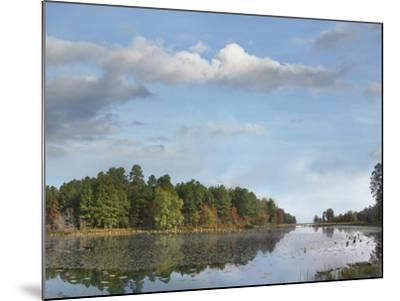 Millwood Lake, Millwood Lake State Park, Arkansas, Usa-Tim Fitzharris-Mounted Photographic Print