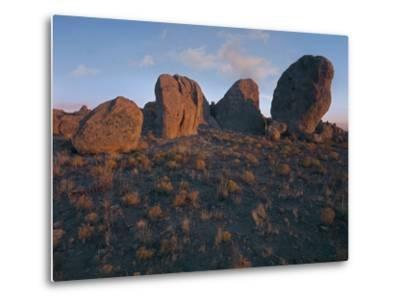Boulders of the City of Rocks State Park, New Mexico, Usa-Tim Fitzharris-Metal Print