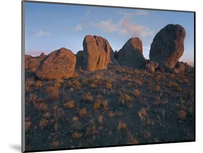 Boulders of the City of Rocks State Park, New Mexico, Usa-Tim Fitzharris-Mounted Photographic Print