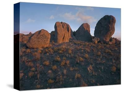 Boulders of the City of Rocks State Park, New Mexico, Usa-Tim Fitzharris-Stretched Canvas Print