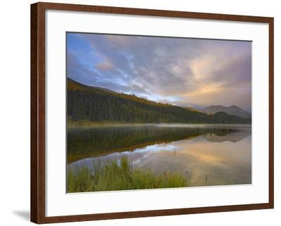 Northern Rocky Mountain Provincial Park, British Columbia, Canada-Tim Fitzharris-Framed Photographic Print