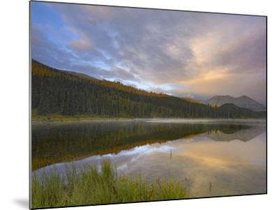 Northern Rocky Mountain Provincial Park, British Columbia, Canada-Tim Fitzharris-Mounted Photographic Print
