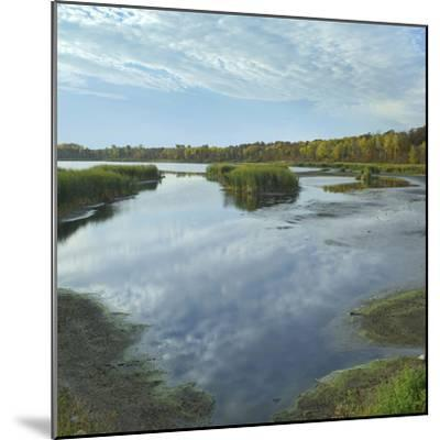Clouds Reflect in the Pembina River Backwaters, Manitoba-Tim Fitzharris-Mounted Photographic Print