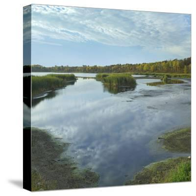 Clouds Reflect in the Pembina River Backwaters, Manitoba-Tim Fitzharris-Stretched Canvas Print