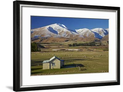 Old Farm Buildings and Kakanui Mountains, Maniototo, Central Otago, South Island, New Zealand-David Wall-Framed Photographic Print