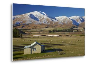 Old Farm Buildings and Kakanui Mountains, Maniototo, Central Otago, South Island, New Zealand-David Wall-Metal Print