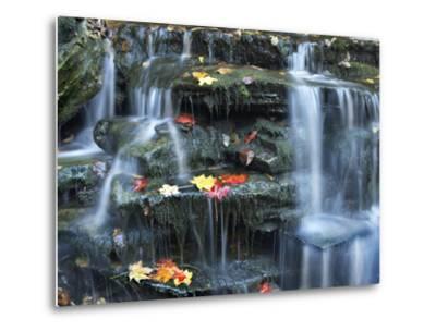 Small Waterfall on Kitchen Creek, Ricketts Glen State Park, Pennsylvania, Usa-Tim Fitzharris-Metal Print