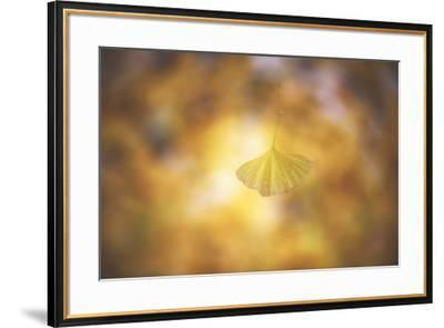 Golden Morning-Philippe Sainte-Laudy-Framed Photographic Print