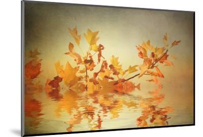 Rusty Fall Stripe-Philippe Sainte-Laudy-Mounted Photographic Print