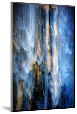 Evening Trees 1-Ursula Abresch-Mounted Premium Photographic Print