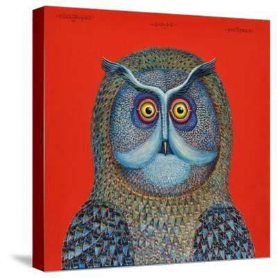 Long-Eared Owl, 2015-Tamas Galambos-Stretched Canvas Print