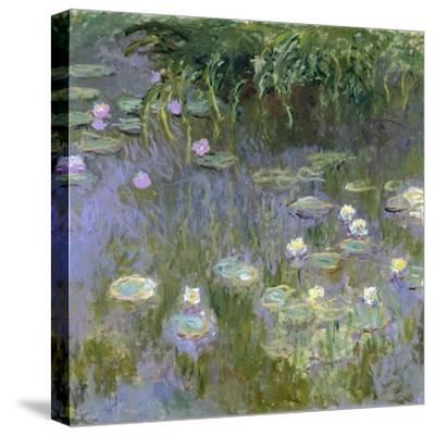 Water Lilies, C1915-Claude Monet-Stretched Canvas Print