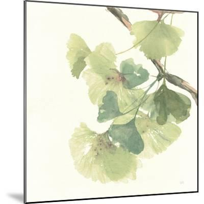 Gingko Leaves II Light-Chris Paschke-Mounted Premium Giclee Print