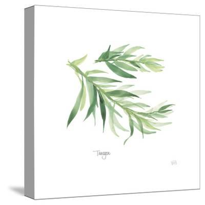 Tarragon V2-Chris Paschke-Stretched Canvas Print