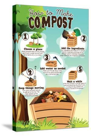 A Vector Illustration of How to Make Compost Infographic-Artisticco LLC-Stretched Canvas Print