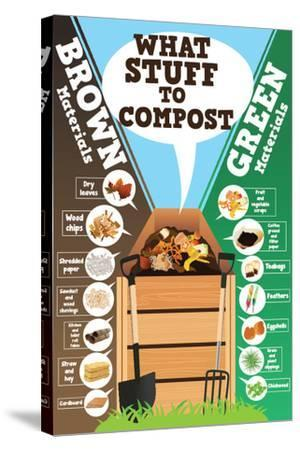 A Vector Illustration of What Stuff to Compost Infographic-Artisticco LLC-Stretched Canvas Print