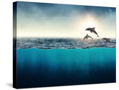 Abstract with Dolphins in Ocean-Elena Schweitzer-Stretched Canvas Print