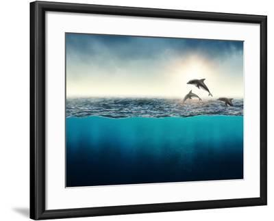 Abstract with Dolphins in Ocean-Elena Schweitzer-Framed Photographic Print