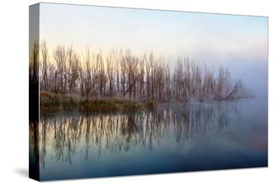 Autumn Morning and Fog on the River, the Autumn Season-Andriy Solovyov-Stretched Canvas Print