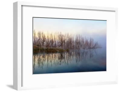 Autumn Morning and Fog on the River, the Autumn Season-Andriy Solovyov-Framed Photographic Print