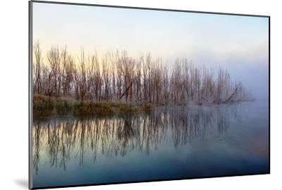 Autumn Morning and Fog on the River, the Autumn Season-Andriy Solovyov-Mounted Photographic Print