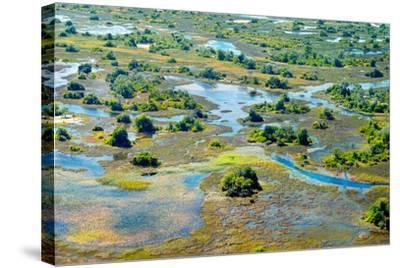 Aerial View of the Spring Floods of the Okavango Delta, Botswana,Africa-Dennis Sabo-Stretched Canvas Print