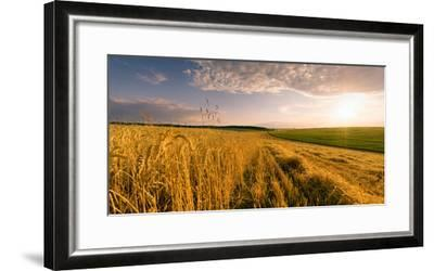 End of Day over Field with Straw-Taras Lesiv-Framed Photographic Print