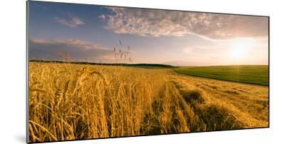 End of Day over Field with Straw-Taras Lesiv-Mounted Photographic Print